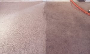 carpet-cleaning-before-after-3-1_orig